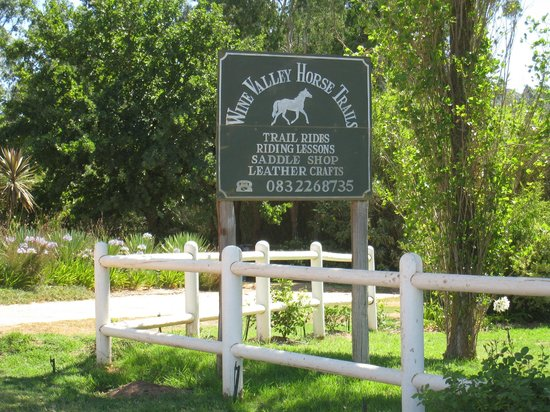 Wine Valley Horse Trails - Tours