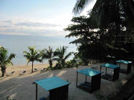 Coco de Mer - Black Parrot Suites: Beach