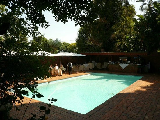 House of Pharaohs Boutique Guesthouse & Conference Centre: Pool Breakfast!