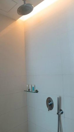 Hotel H2O: Rain shower is a nice touch.