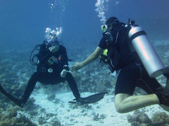 Ilios Dive Club