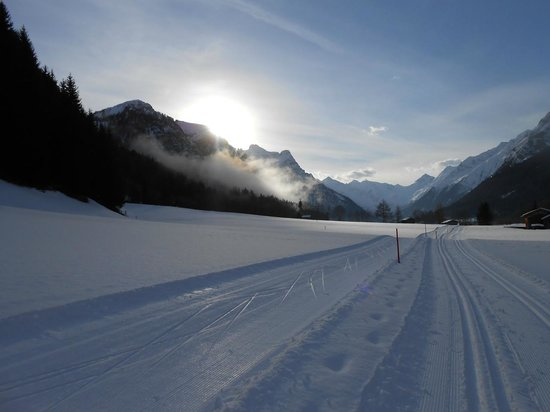 Hotel Hohe Burg: The cross country ski trails and the Trins Valley is amazing