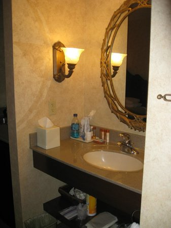 AmishView Inn & Suites: bathroom