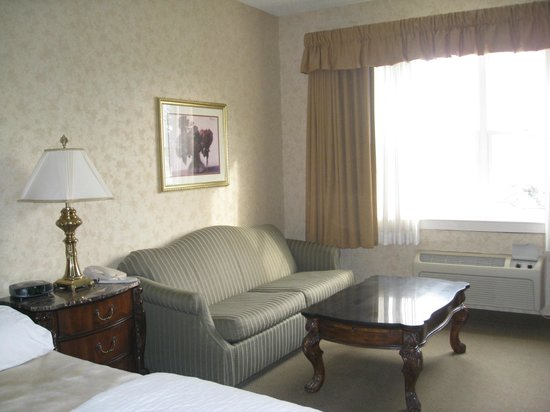 AmishView Inn & Suites: sofa couch in king room