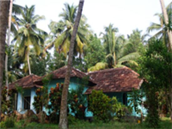 Coconut Cottages