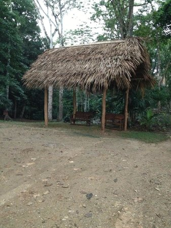 Mariposa Jungle Lodge: on grounds