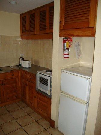 Tanoa Apartments: Kitchen