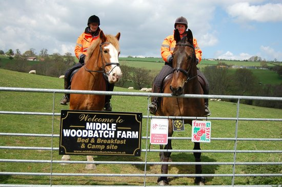 Middle Woodbatch Farm: Bring your horse on holiday