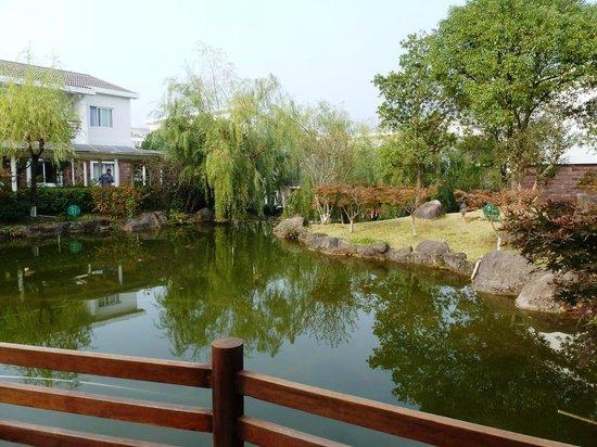 Wangfeng Garden Hotel : Hotel's landscaped grounds