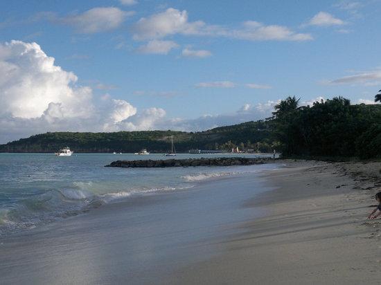 Buccaneer Beach Club: Dickenson Bay