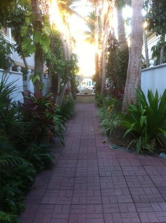 Tortuga Beach Resort: The center courtyard
