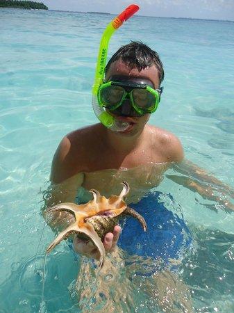 Bandos Maldives: Snorkelling