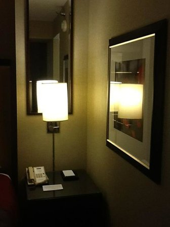 Hyatt Regency Deerfield: Decor