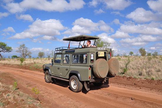 Аруша, Танзания: jeep safari