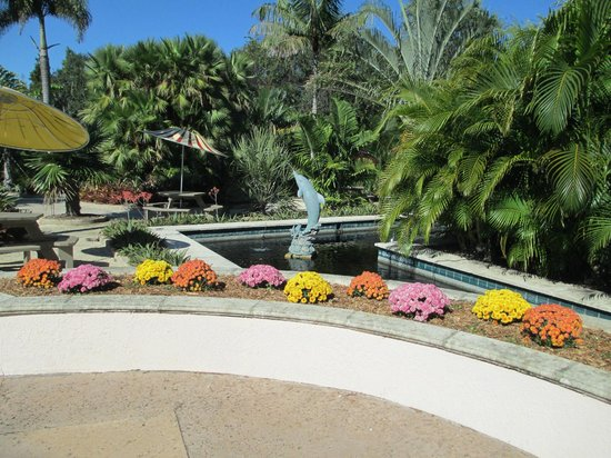 Mosaic Bench Picture Of Florida Botanical Gardens Largo Tripadvisor