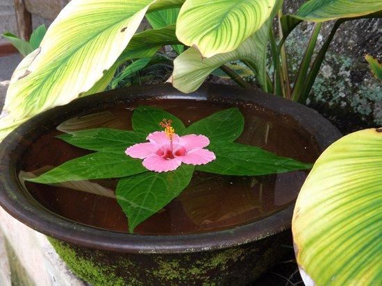 Barong Resort and Spa: Spa flowers
