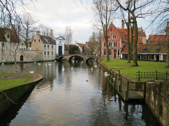 Den Witten Leeuw: Nearby Canal Scene