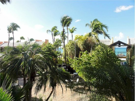 Divi Village Golf and Beach Resort: View from room 135