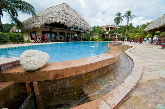 Belizean Dreams: Infinity pool and dining area