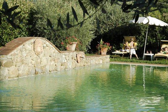 Locanda del Molino: la piscina della locanda