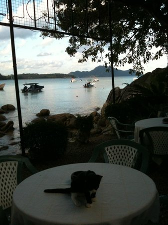 Paradise Beach Bar: View from one of the tables.