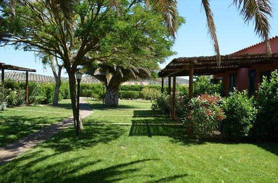 Agriturismo Capalbio Agrialbergo: Giardino