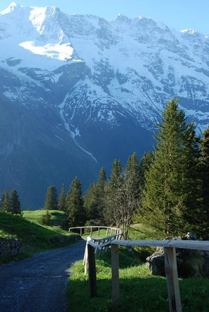 Eiger Guesthouse: The sun makes everything magical. Sonnenberg Valley up and behind the hotel.