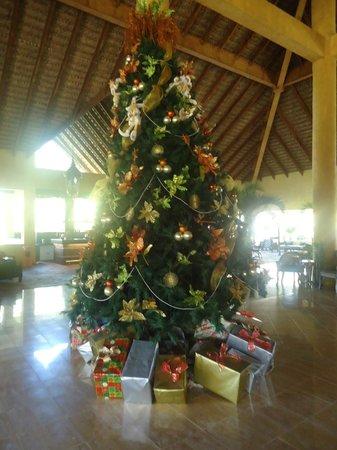 Punta Cana Princess All Suites Resort & Spa: Christmas tree in Lobby