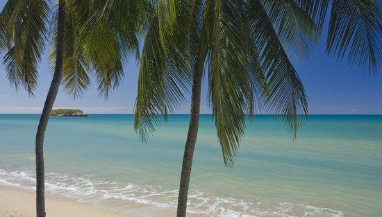 فيلا بيتش كوتيدجيز: View of the Caribbean Sea