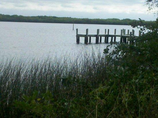 Harbor Heights Park: Reeds & Boat Dock