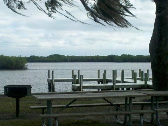 Harbor Heights Park: Swaying Spanish Moss on a Breezy Day @Harbour Heights