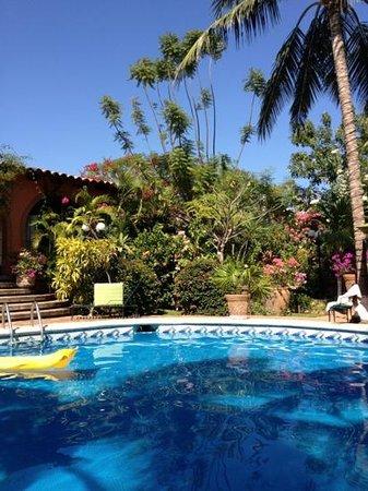 Suites La Hacienda : alberca