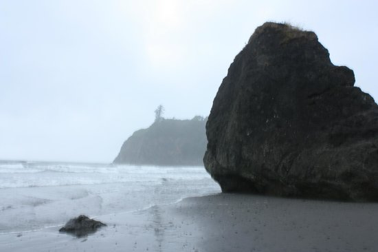 Ruby Beach in the mist
