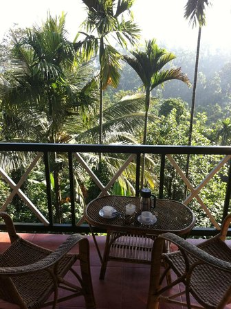 Glenora Homestay: Delicious tea is served every morning & afternoon on the stunning balcony. What a treat!