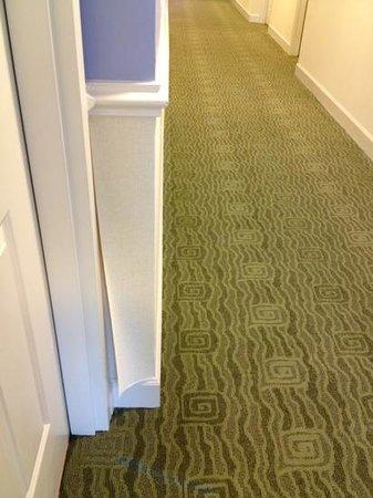 Hotel Indigo Sarasota: wallpaper peeling in hallway