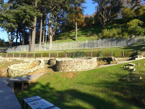 Fortaleza de O Castro: aldea castros