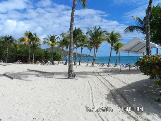 Divi Carina Bay All Inclusive Beach Resort: Beach