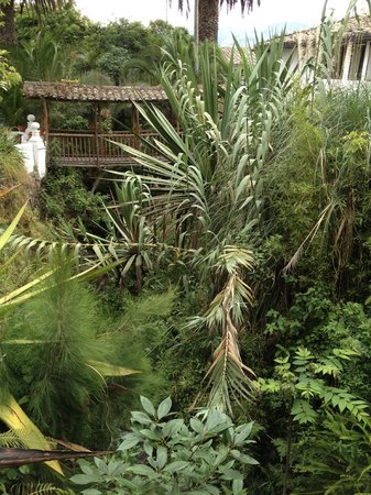 Hacienda- Hosteria Chorlavi: Stream running across the grounds