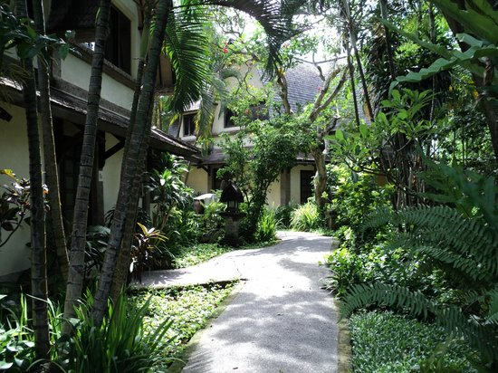 Hotel Vila Lumbung: Walkway to our room