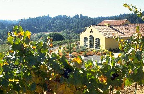 Marimar Estate Vineyards and Winery