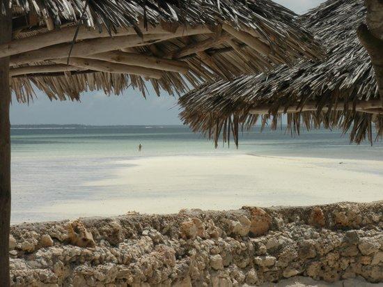Palumboreef Beach Resort: vista dalla spiaggia
