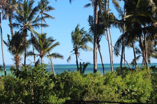 Palumboreef Beach Resort: vista dalla camera