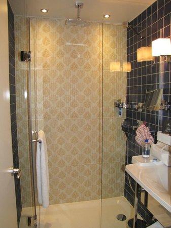 Hotel Atmospheres: Great sized shower - rainwater shower head