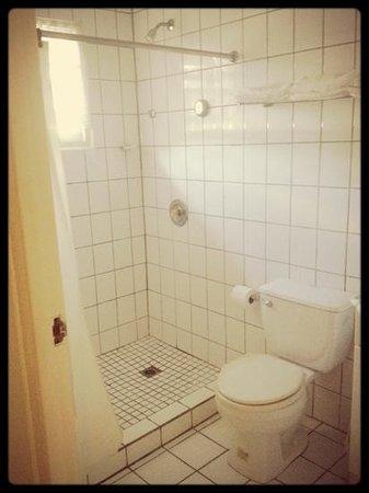 Coconut Inn: bathroom