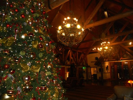 Big Cedar Lodge: Falls Lodge