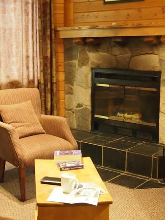 Bear Hill Lodge: cozy living space (and a large screen TV!)