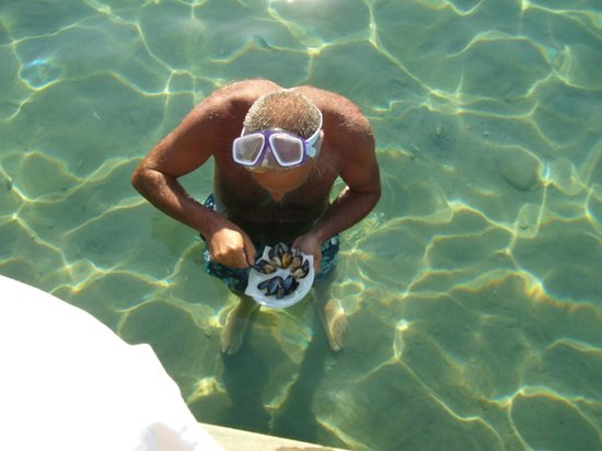 Mandalya Hotel: denizde midye keyfi