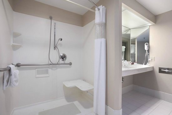 Ramada Plaza Geneva Lakefront Resort: Bathroom w/Roll-in Shower
