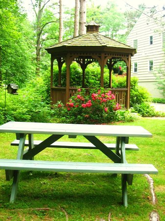 Berkshire Hills Country Inn: Picnic by the brook