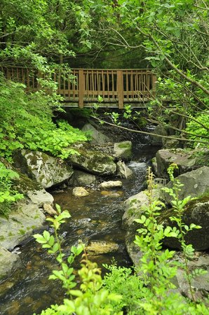 Berkshire Hills Country Inn: Our bridge leads you over Hemlock Brook